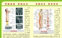 干细胞疗法:金木同源堂双青胶囊补骨髓的作用是什么?
