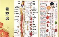骨髓的重要性:民间中医蔡长福老先生的六经辨证图谱--骨空论