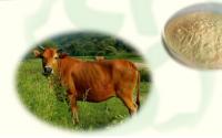 牛骨髓胶原蛋白肽的功能与适宜人群
