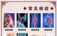 牛骨髓肽促进骨骼生长发育,骨髓多肽对骨科疾病的营养作用!