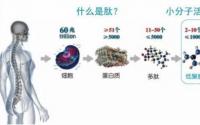 关于小分子肽最全面最客观的介绍(收藏)