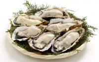 你绝对想不到,牡蛎肽竟然这么好!