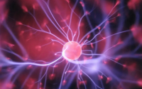 干细胞抗衰老作用那么明显,干细胞怎样激活?