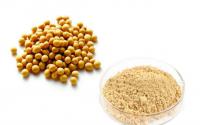 鱼精蛋白肽粉的主要作用增强氧代谢能力,缓解机体疲劳