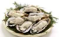 牡蛎肽的什么功能与作用!男人越看越想看,女人看了脸红!