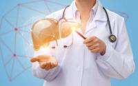 干细胞疗法在治疗肝炎、肝硬化中的几个实例,干细胞有肝脏修复