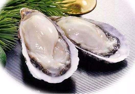 牡蛎.jpg