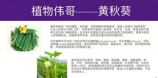 吃黄秋葵牡蛎肽可了降血糖吗?