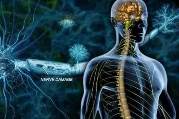 干细胞与多发性硬化症.png