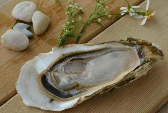 牡蛎肽壮阳效果怎么样.png