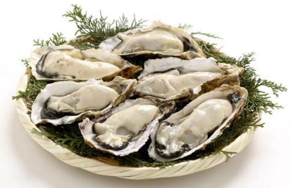 仟益能牡蛎肽参虫草片主要作用