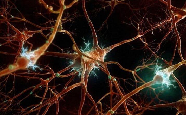 干细胞对脑梗后遗症.png