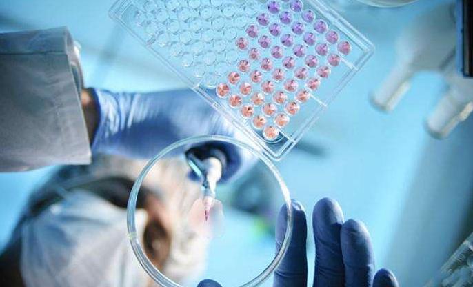 新冠病毒对肽的影响.png
