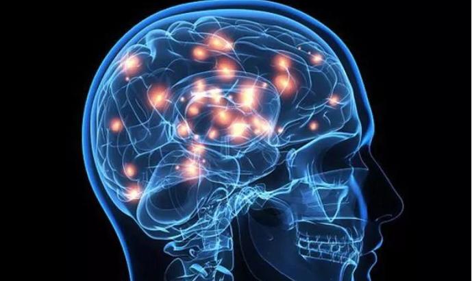 肽对神经的作用.png