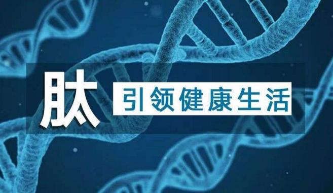 肽引领健康生活.png