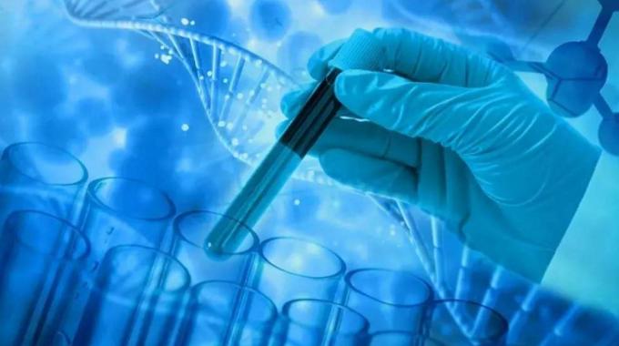 干细胞对肾衰竭期有逆转作用吗