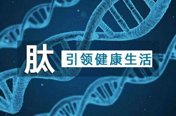 什么是肽?怎么判断自己要不要补肽呢?