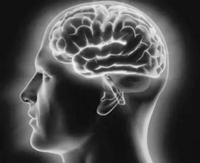 干细胞能修复大脑神经吗.png