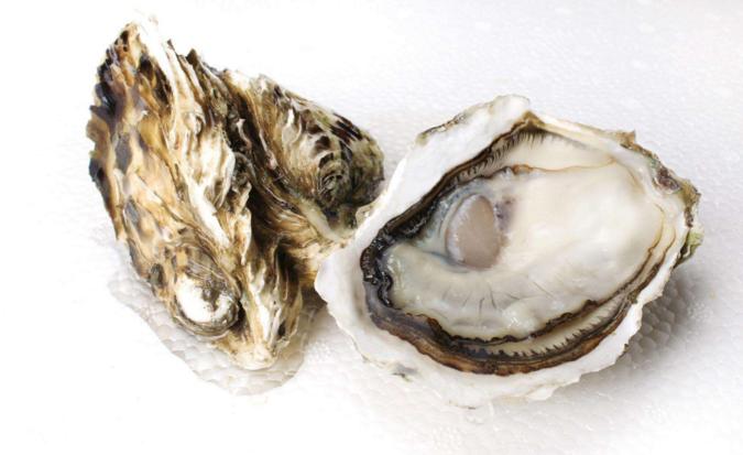 都说牡蛎肽补肾效果好痛风病人可以吃牡蛎肽补肾吗?