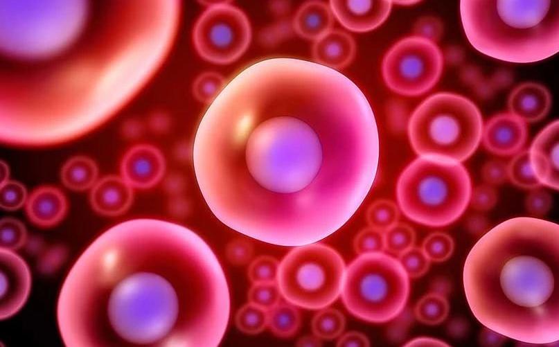 干细胞注射与传统治疗滑膜炎的方法有什么优势大药要花费多少钱