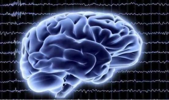 小分子肽对抑郁症的作用.png