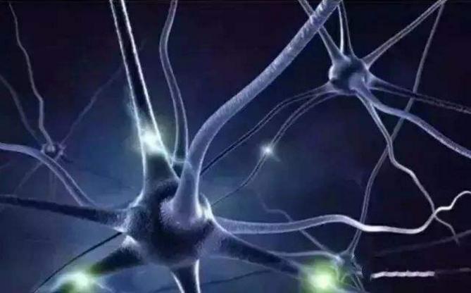 小分子肽能治疗抑郁症吗.png