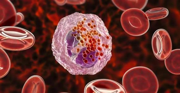干细胞治疗动脉粥样硬化.jpg