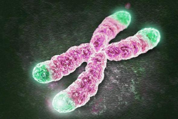 服用肽可以让人长寿吗?是不是骗人的?