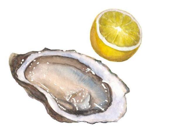 牡蛎肽柳橙味固体饮料.png