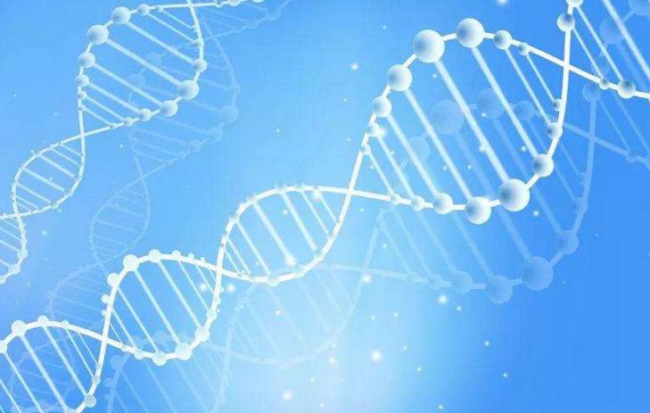 小分子肽从来没有骗过任何人,而是卖小分子肽的人骗了你!