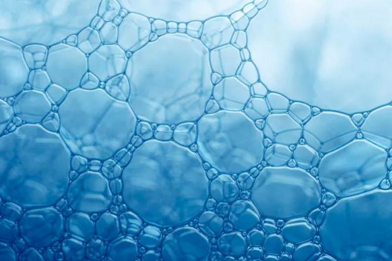 小分子肽作用.png