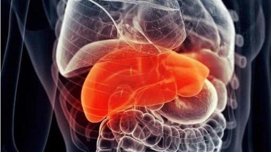 肽能治疗肝炎吗.png