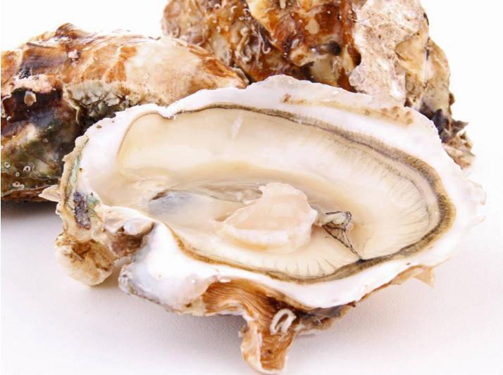 牡蛎肽的功效.png