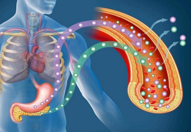 肽对心脑血管的疾病.png