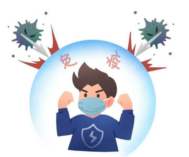 肽能增强免疫力吗.png