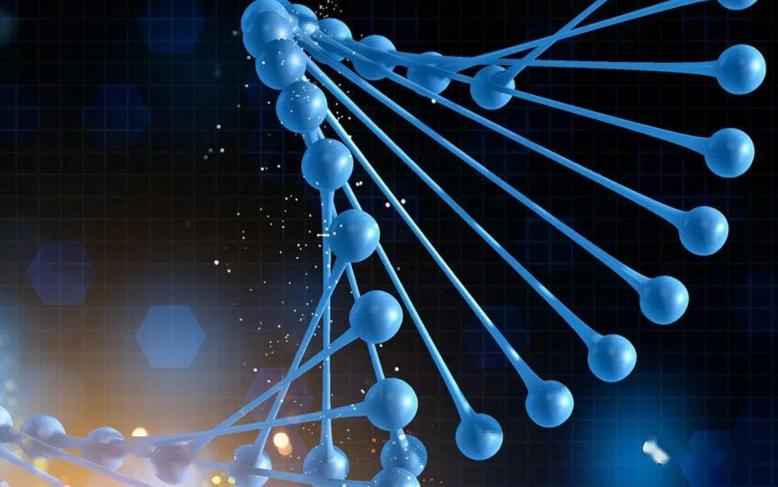 哪些肽抗癌和抗病毒效果最好?价格怎么样