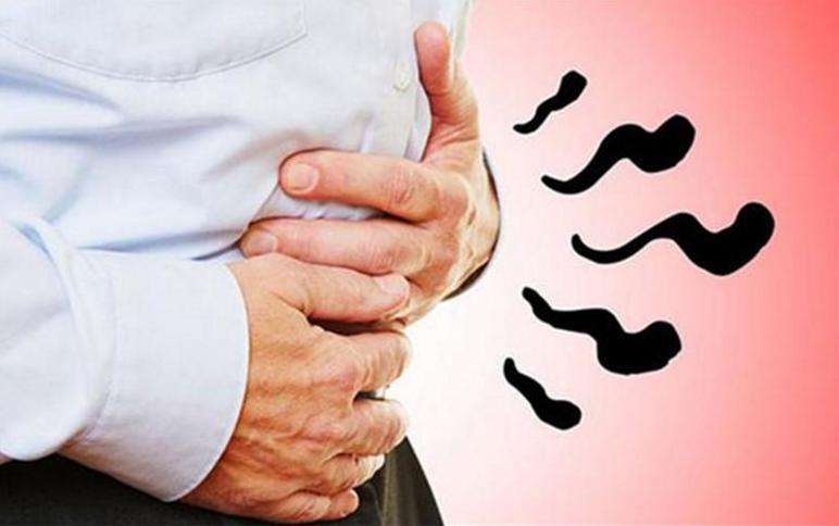 小分子肽对肠胃的功能.png