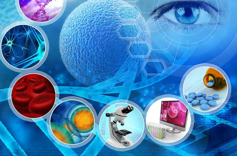 干细胞疗法在系统性红斑狼疮治疗中的应用