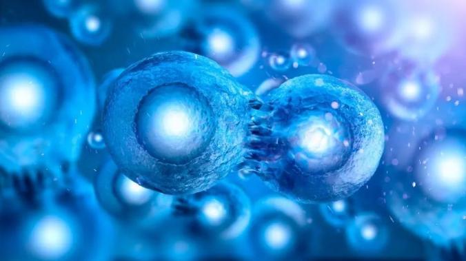 干细胞注射能根治糖尿病吗.png