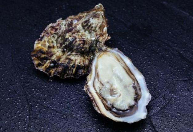 什么是人参牡蛎肽?人参牡蛎肽有哪些作用?哪个牌子的效果好?