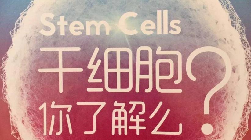 干细胞的作用和功效是什么,打干细胞的好处和坏处都是什么