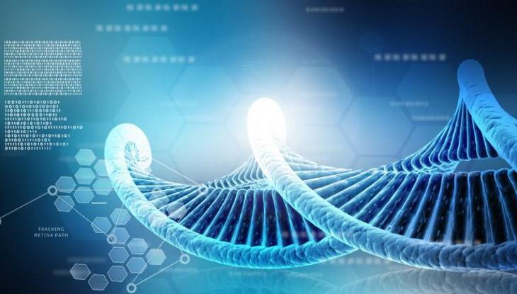 老人吃小分子肽能增强免疫力吗,小分子肽品牌与作用