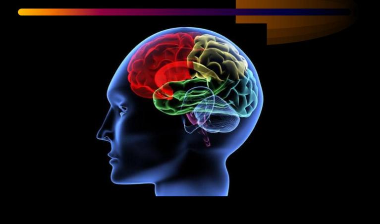 肽与脑血栓.png