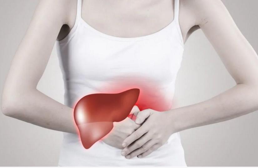 肽对肝的影响.png