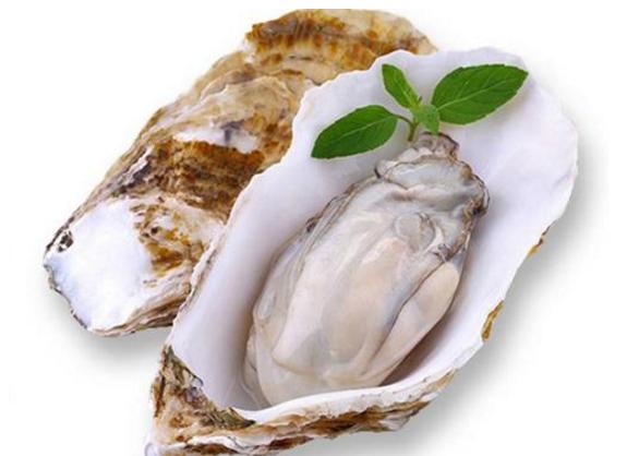 牡蛎肽是痛风病人的禁忌吗,痛风病人能通过吃牡蛎肽补肾吗