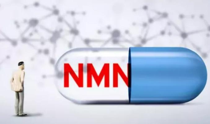 NMN适合哪些人服用.png